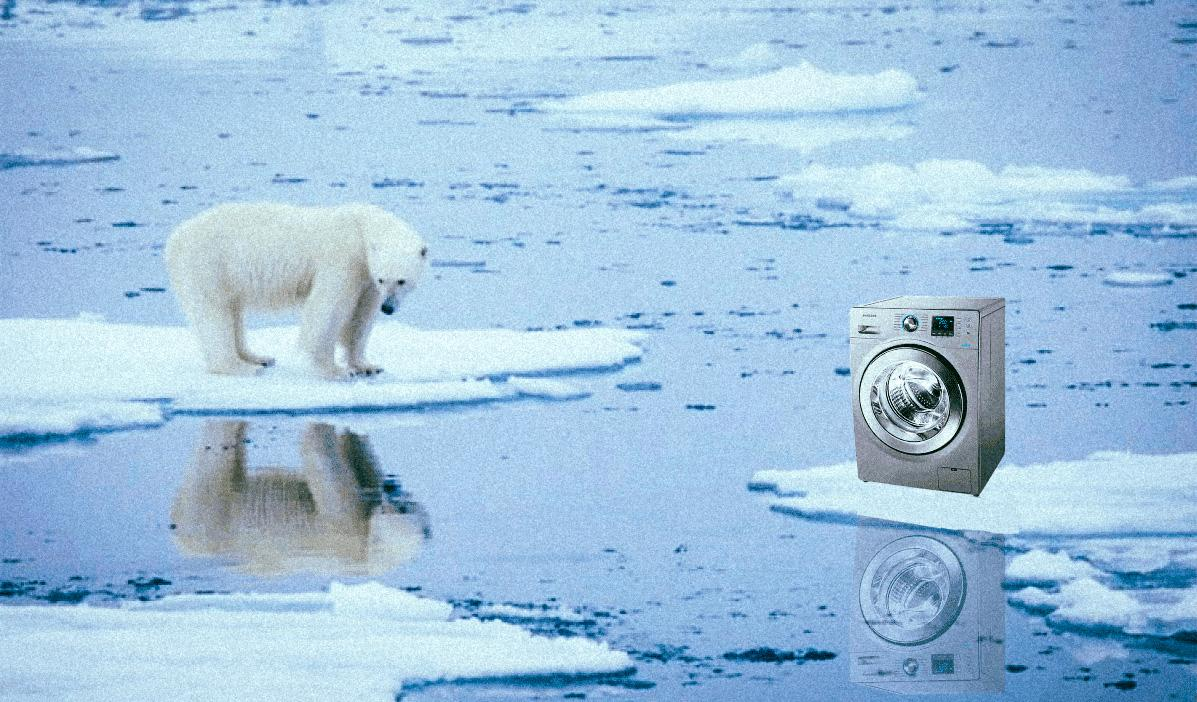 Dans les eaux arctiques, le vivant  victime de nos vêtements