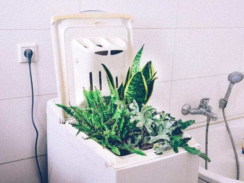 Le greenwashing fait florès sur internet