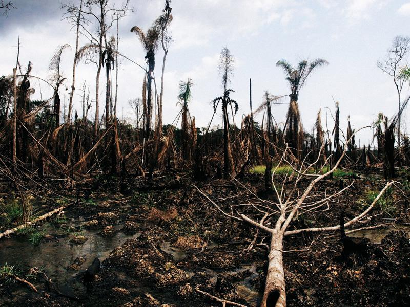 Des fermiers nigérians obtiennent (enfin) justice contre Shell
